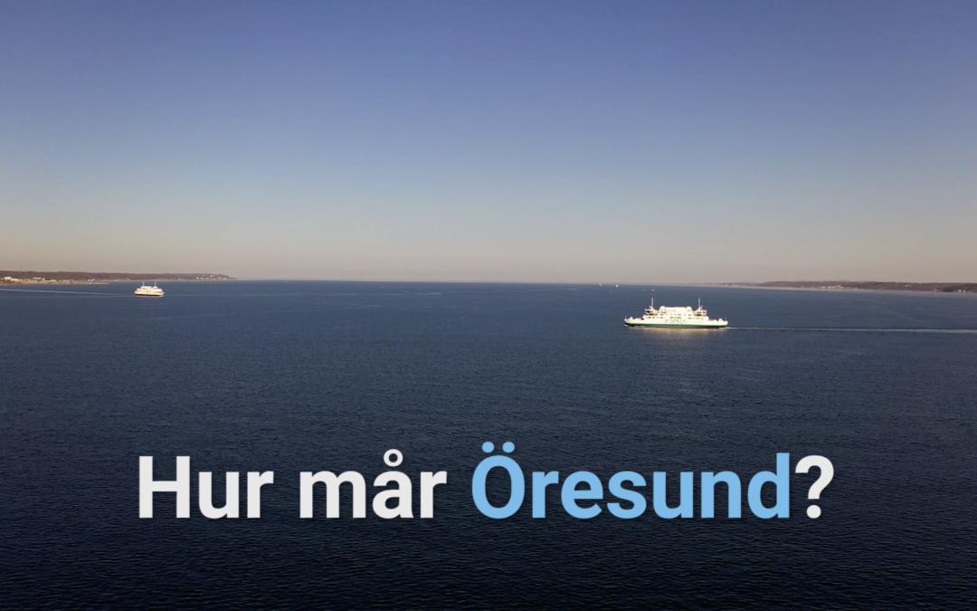 Helsingborgs stads film om Havsresan 2019